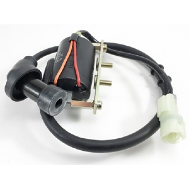 Ignition Coil- Buddy 170i